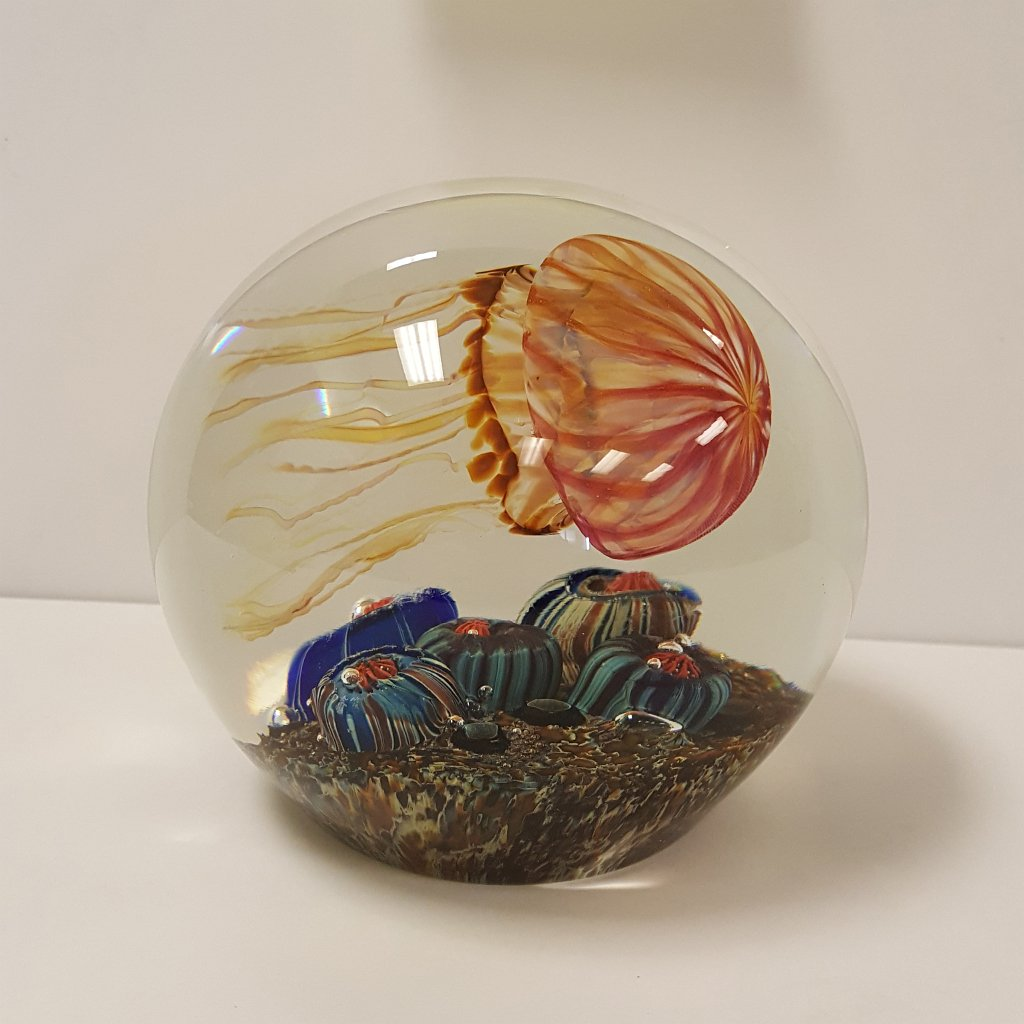 Richard Satava - Gold Ruby Jellyfish Sideswimmer