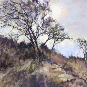 Lyn Asselta - Lyn Asselta Pastel paintings
