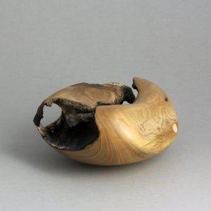 Mark Wood - Magnolia