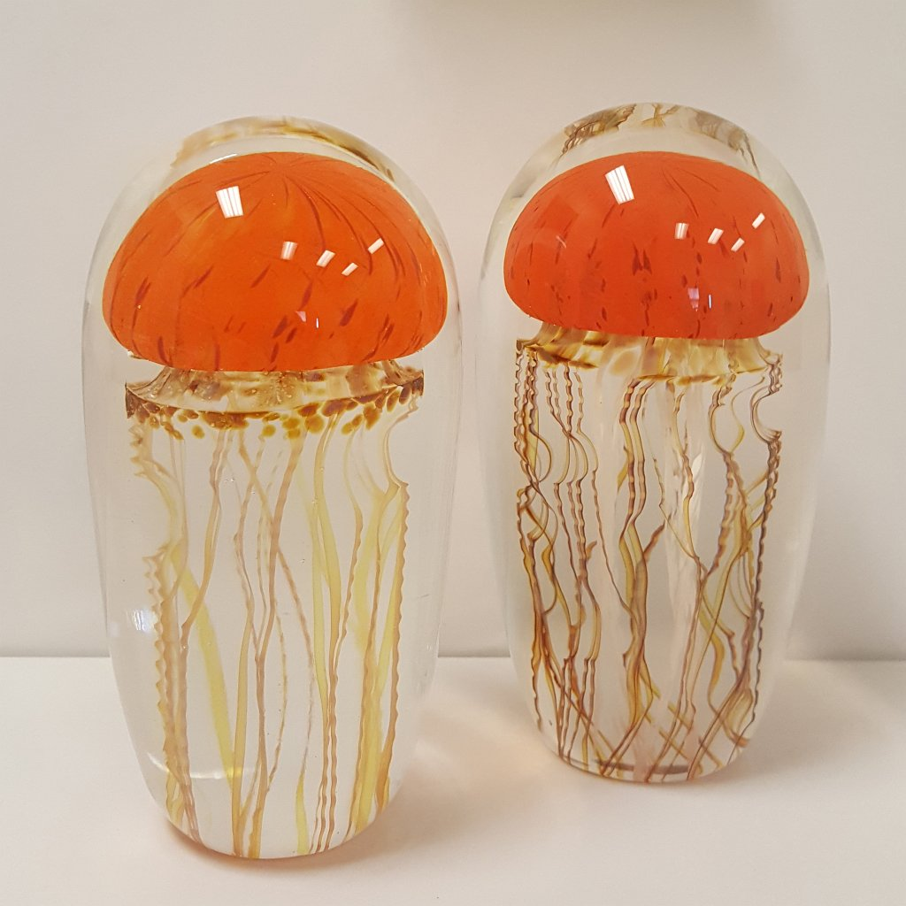 Richard Satava - Pacific Coast Jellyfish