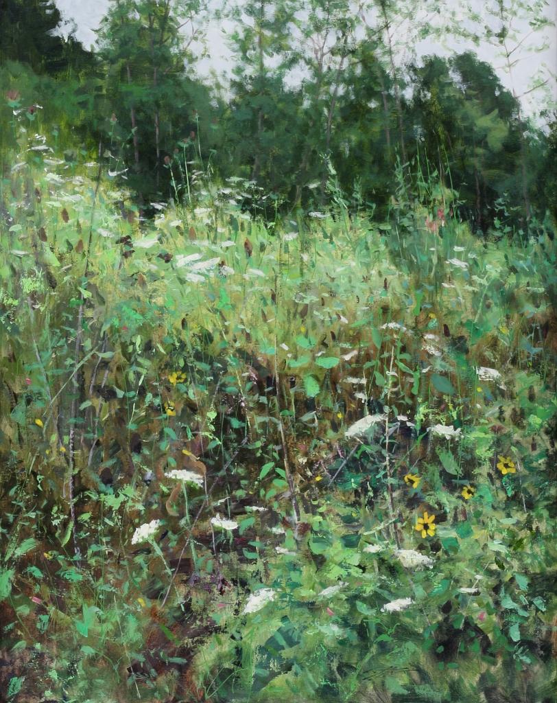 Matthew Cutter - Wildflowers